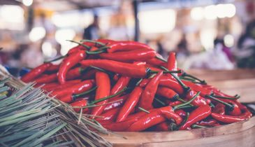 How long do chillies take to grow?
